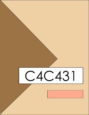C4C431Sketch