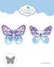 ECD-butterfly aper